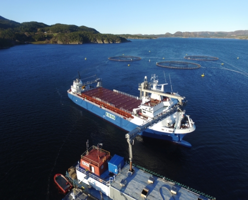 Fôrbåt leverer i DP-mode - articgroup.no