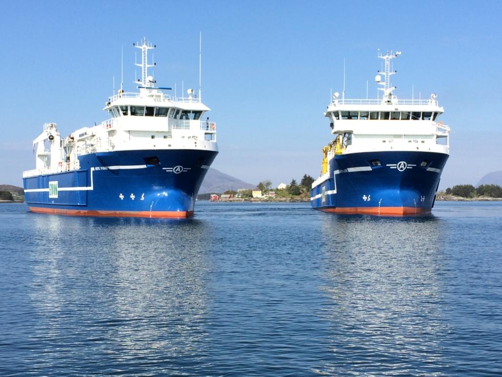 Moderne og effektive fiskefôrskip